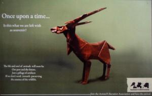 ad campaign wwf3